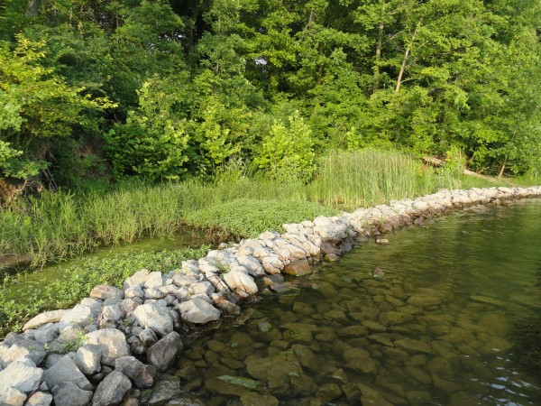 Shoreline Metrics Home Page Image
